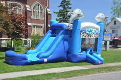 Dolphin Combo Waterslide