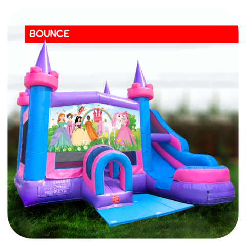 Princess Bounce House & Slide Combo Rental