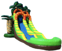 18 ft Amazon Falls Water Slide