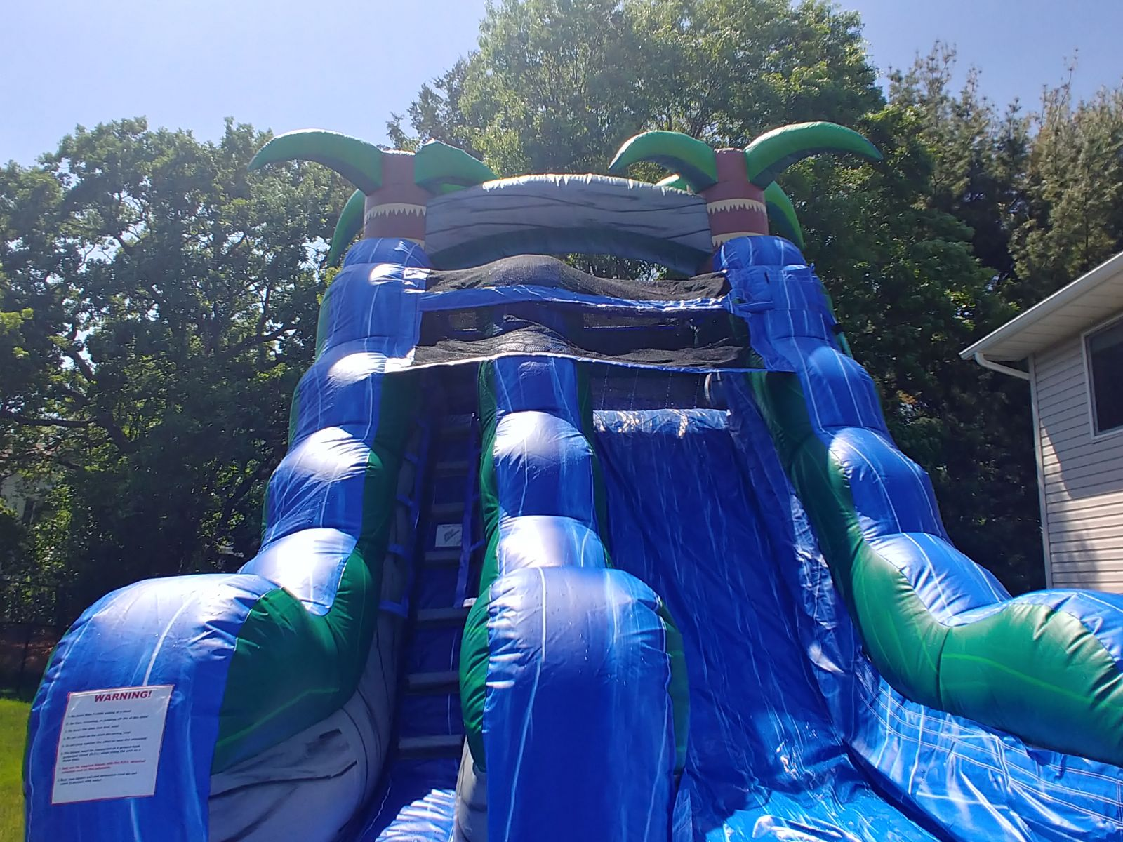 Water Slide rental with palm trees