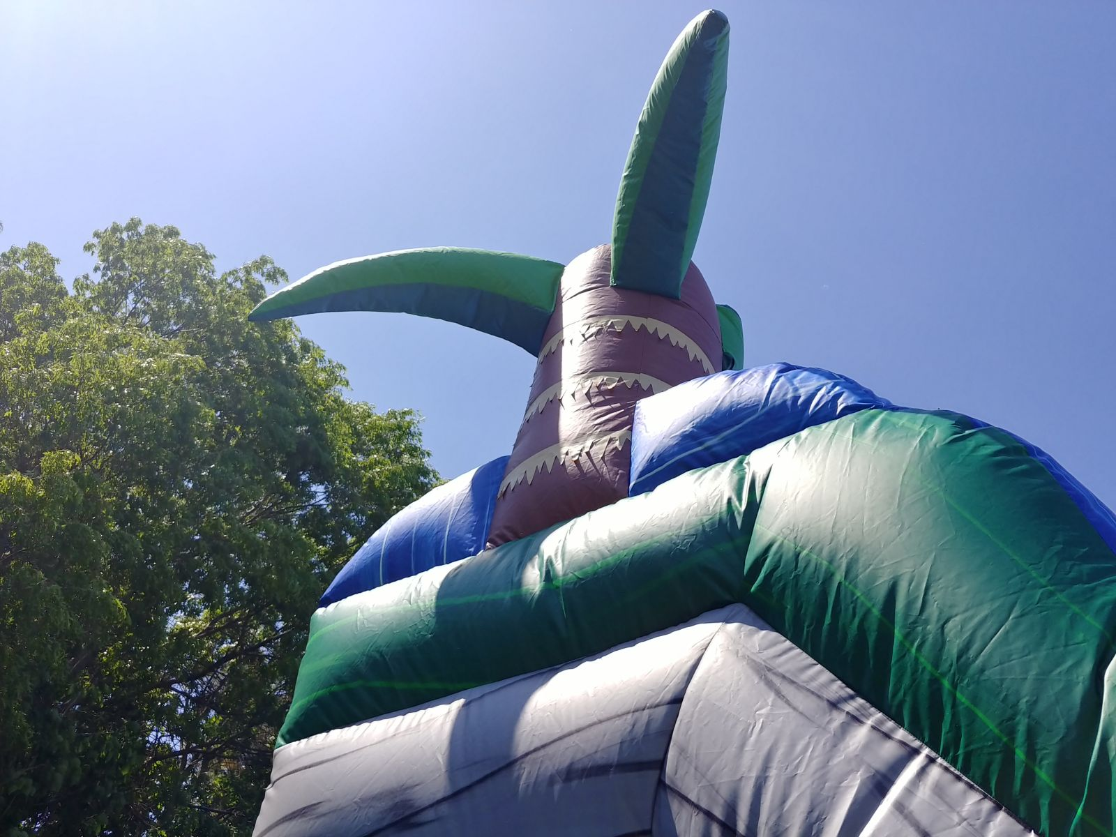Water slide rental with tropical theme