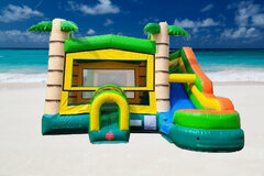 Tropical Bouncer With Slide (WET/DRY)