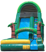 20 ft Palm Tree Waterslide