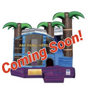Tropical Palm 4 in 1 with Slide