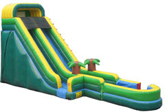 22ft Jungle Slide