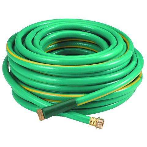 100' Water Hose ($8)
