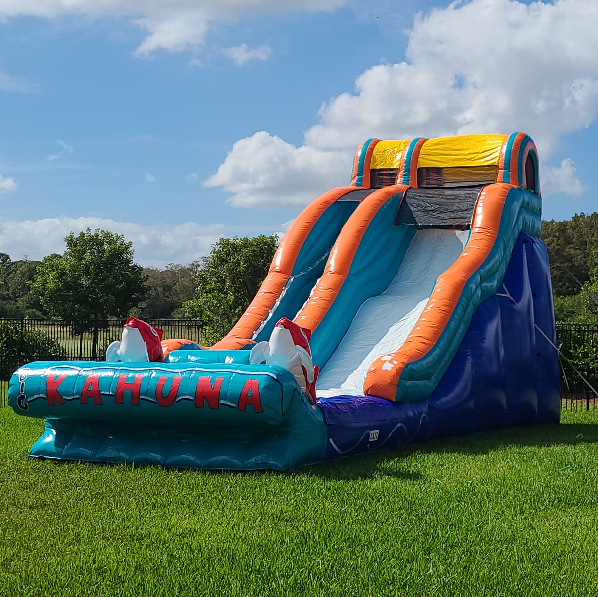 water slide rentals fort myers florida