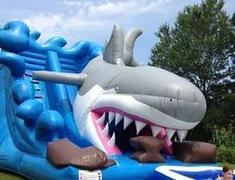 25ft Shark Water Slide