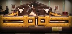 Deluxe Mechanical Bull w/ operator