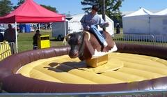 Standard Mechanical Bull w/ operator