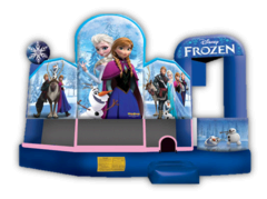 Disney Frozen Combo 5 in 1 Dry