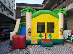 "Inflatable # 24 ""Jungle Dry Slide"""