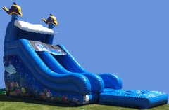 Dolphin Water Slide & Pool