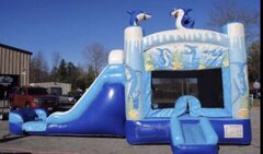 Shark Water Slide & Bounce Area