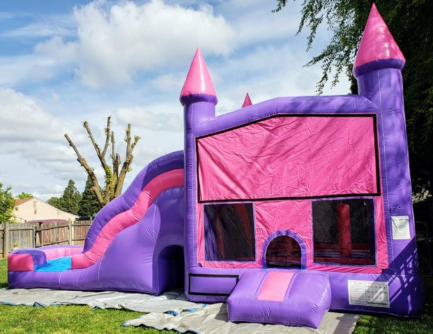 32ft Purple Bounce and Slide dry