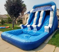 Dolphin Dual Lane Water Slide