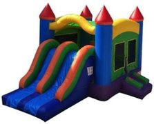 3-1  Palace Dual Lane Slide (Medium-size)