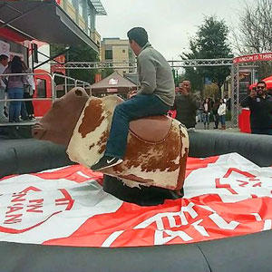 Houston Mechanical Bull Rental