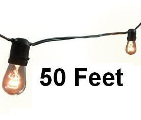 50Ft of Bistro Lights
