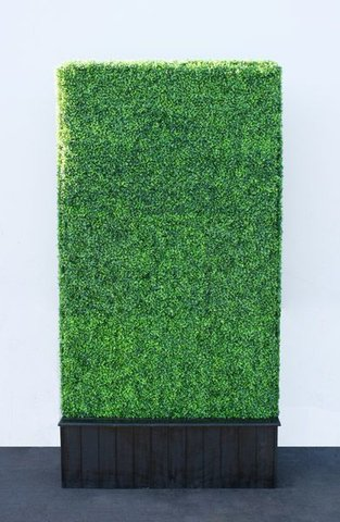 Hedge Wall Backdrop - 4x8 Section