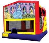 Large 4in1 Disney Princess