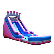 Princess Waterslide
