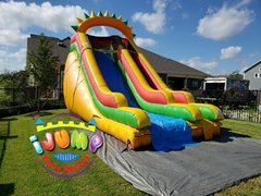 18 Ft. Dino Slide (Dry)Recommended for ages 6+ Space Needed: 34'L X 16'W X 20'H