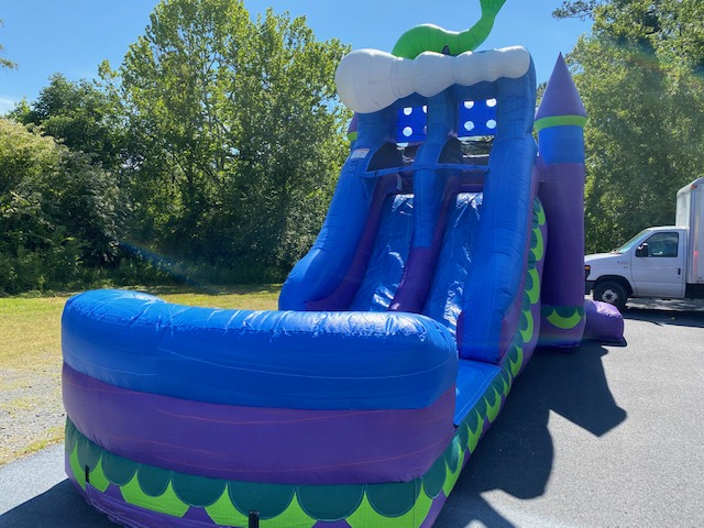 Purple Crush Dual Lane Slides