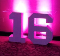 Block 16 Lettering LED (At Our Facility)