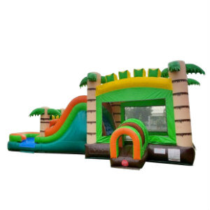 Mega Tropical Dry Slide