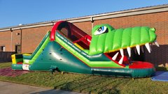 Alligator Double Lane Water Slide