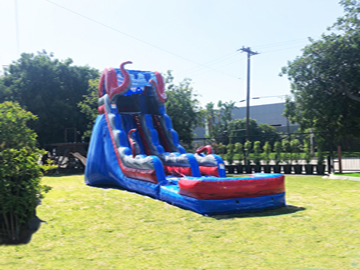 Water Slide Birthday Party
