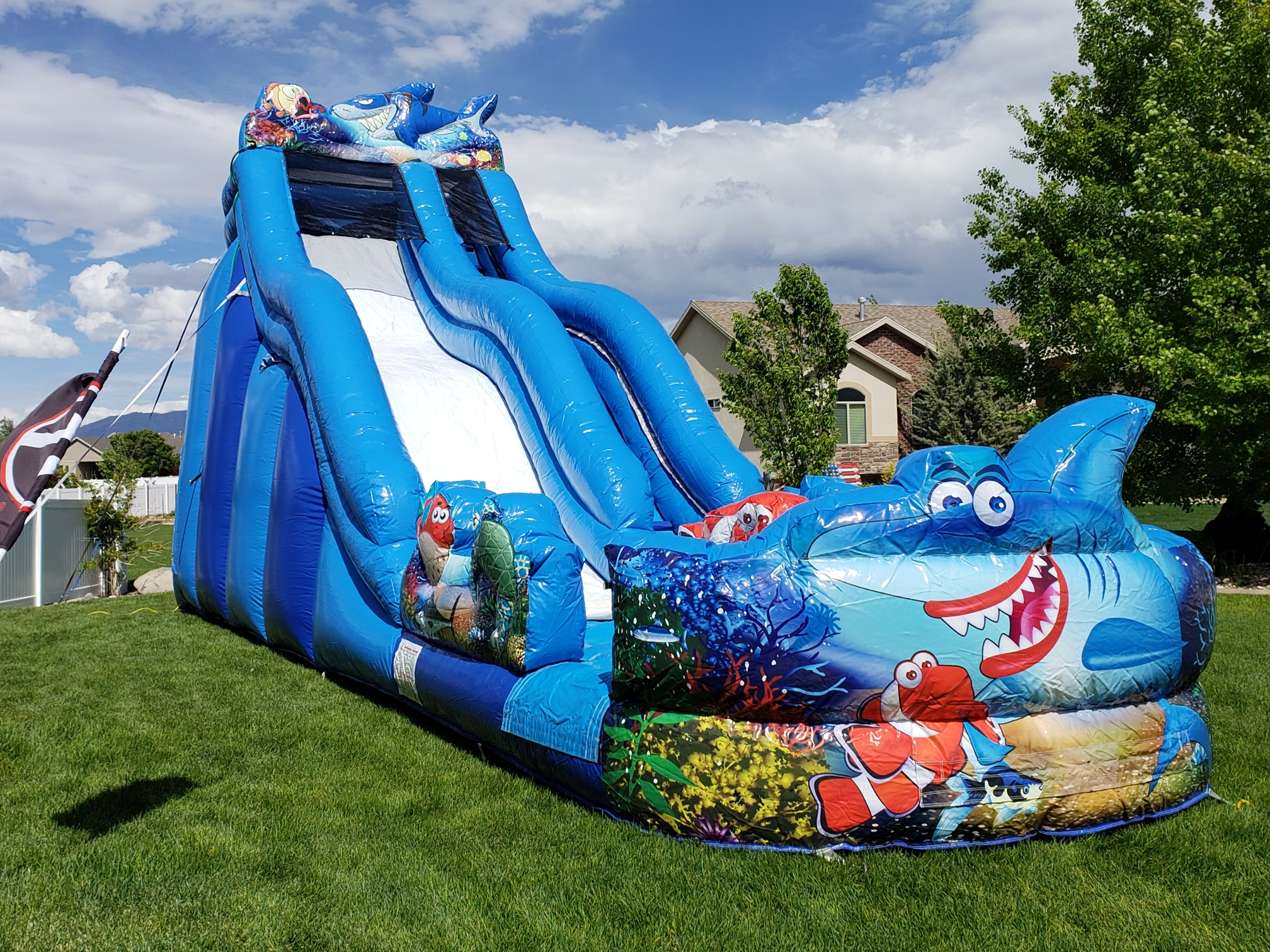 Shark Water Slide Jumpin Jack Splash
