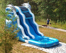 Dolphin Waterslide*