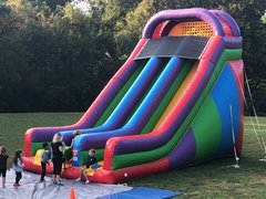 Wacky 22ft Dual Lane Slide