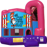 Cat in the Hat 3-in-1 Combo w/slide Pink & Purple