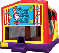 Cat in the Hat 4-in-1 Combo w/ water slide