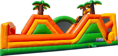 18ft Jungle Run double slide