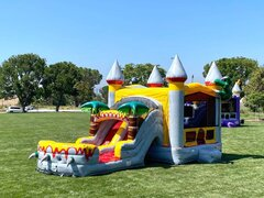 5 in 1 Wet Dry Slide Bounce house Package