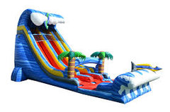 26ft Shark Attack Dual Lane Slide