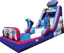 Tropical Paradise Dual Lane Wet or Dry Bounce house Slide combo