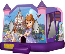 4 in 1 Sofia Bounce House Combo (Wet/Dry)