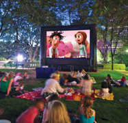Deluxe Movie Night Package - Mega Screen 25x14ft