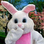 Easter Bunny Character