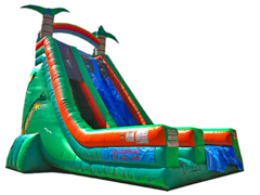 27 ft Double Tropical Slide