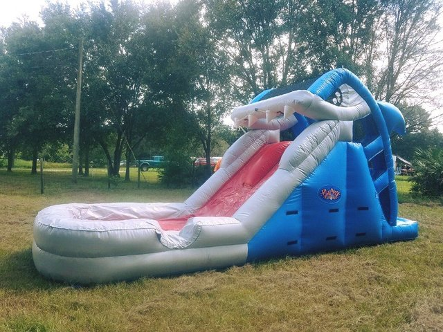 (g) 10ft Shark Water Slide- Juniors DCF APPROVED