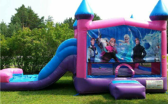 Themed Inflatables