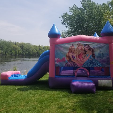 Wet/Dry Slide Combo Princess Theme
