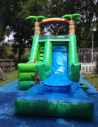 PALM TREE SLIDE 16FT