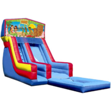 chicago inflatable water slide rental